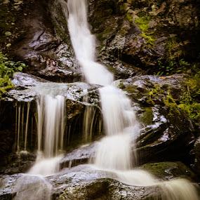 Dark Hallow Falls by Christine Weaver-Cimala - Nature Up Close Water ( water, nature, park, dark hallow falls, falls, virginia, shenandoah )
