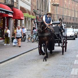 Streets of Brugge by Gayle McMahan-Vuletic - City,  Street & Park  Street Scenes ( shoppers, carraige, horse, belgium, brugge,  )