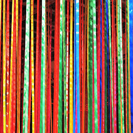 Rainbow Stripes by Koh Chip Whye - Abstract Patterns