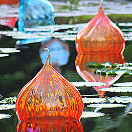 Chihuly floating glass art by Constance S. Jackson - Artistic Objects Glass ( water, chihuly, art, floating, glass )