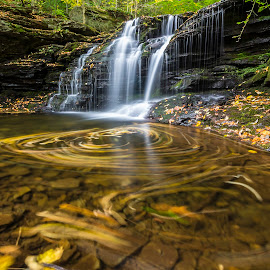 Swirl by László Gecző - Landscapes Waterscapes ( water, autumn leaves, autumn, creek, waterfall )