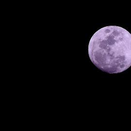 moon moon by Deblina Bhunia - Novices Only Objects & Still Life ( moon, night, moonlight,  )