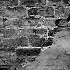 Weathered Bricks by Michelle Baity - Buildings & Architecture Architectural Detail ( blackandwhite, brick, texture, bw, bricks, architecture, close-up, closeup )