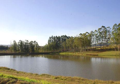 Terreno residencial à venda, Condomínio Ninho Verde II, Pardinho - TE0022.