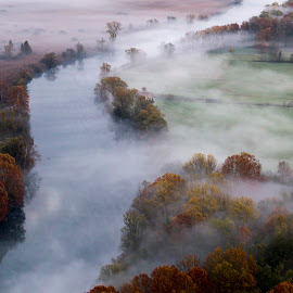 Morning mist on Adda by Pietro Ebner - Landscapes Waterscapes ( tree, fog, autumn, fall, trees, morning, river, mist )