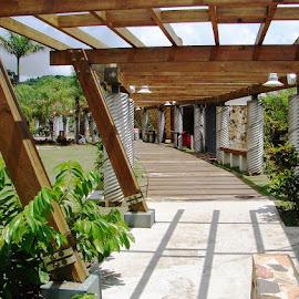 Botanical Gardens, Caguas, Puerto Rico by Ada Irizarry-Montalvo - City,  Street & Park  City Parks (  )
