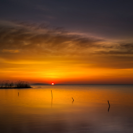 Today is another day by Andrei Grososiu - Landscapes Sunsets & Sunrises ( orange, reed, red, sky, lake, sunrise, light )