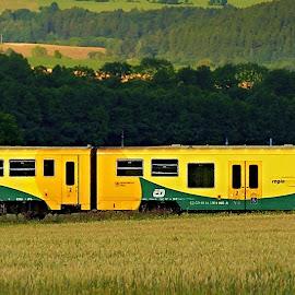 by Miroslava Winklerová - Transportation Trains