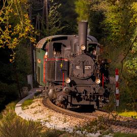 Steam Locomotive MLV Zwettl Sturmexpress 2 by Franz  Adolf - Transportation Trains ( steam locomotive, locomotive, train )