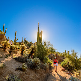 Hiking Mountain Peak by Ralph Resch - Landscapes Deserts ( desert, peak, hiking )