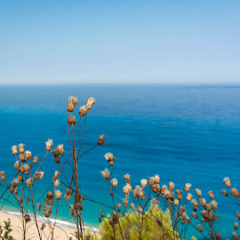 Lefkada by Andreea Diana Furnea - Landscapes Beaches ( greece, sea, beach, waterscapes, landscapes, flowers )