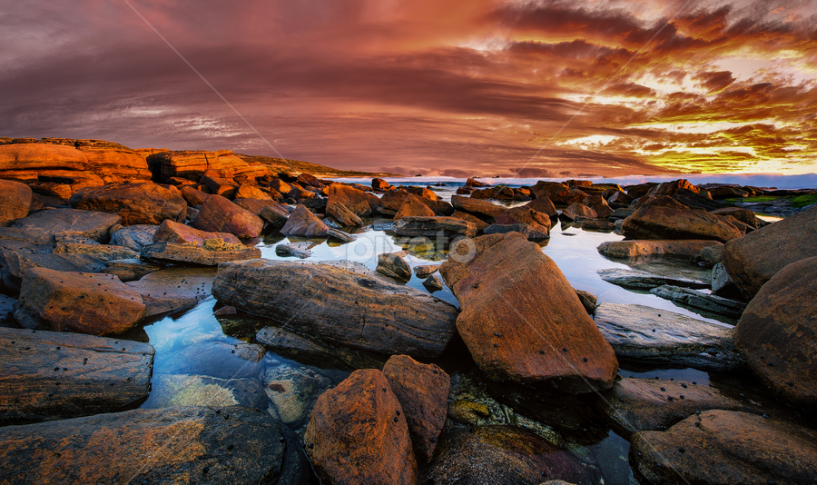 Into Red by Greg Tennant - Landscapes Sunsets & Sunrises ( sunset, rocks, coast )