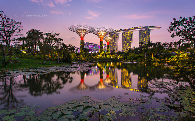 gardens by the bay singapore credits
