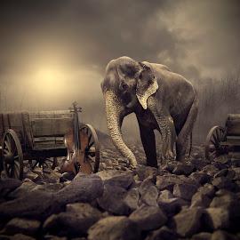 : A p r o d i t e d : by Wesmatra Art - Digital Art Animals