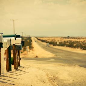 Crossroad mail boxes by Mariusz Murawski - Landscapes Deserts ( film, kodak ektar 100, wonder valley, desert, medium format, vehicle, road, mamiya rb67, mailbox, sekor lens, mamiya, sekor, outdoor, sekor-c 180mm, mamiya rb67 pro-sd )
