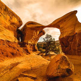 Desert Garden Arch by Jerry Cahill - Landscapes Caves & Formations ( #nature #sky #sun #summer #beach #beautiful #pretty #sunset #sunrise #blue #flowers #night #tree #twilight #clouds #beauty #light #cloudporn #photooftheday #love #green #skylovers #dusk #weather #day #red #mothernature #wowphoto #arch #desertarch )