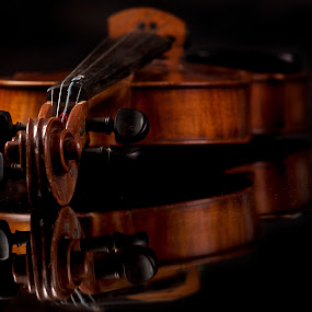 Viiolin by Cristobal Garciaferro Rubio - Artistic Objects Musical Instruments ( violin, wood, classical, strings, instrument, classic )