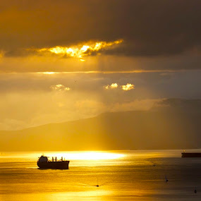 It really looked this dramatic... by D. Bruce Gammie - Landscapes Waterscapes ( water, freighter, ocean, sunshine, spotlight )