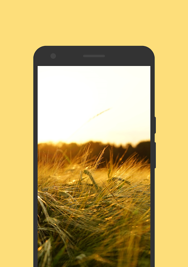 WALLPIX -  Wallpapers Screenshot 6