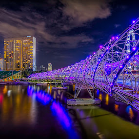 Helix bridge @ night by Senthil Damodaran - City,  Street & Park  Street Scenes ( helix bridge, street scenes, pan pacific, singapore, nightscape, , hdr, bridge )