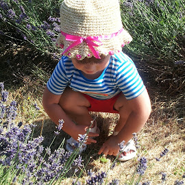 Lavender Love by Lorraine Stockham - Babies & Children Child Portraits