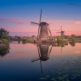 A lot of historic windmills by Rémon Lourier - City,  Street & Park  Historic Districts ( colourful, kinderdijk, holland, historic district, sunrise, windmills, unesco )