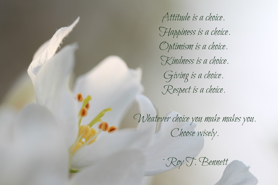 Choices by Tammy Drombolis - Typography Captioned Photos ( self care, apple, blossom, affirmation, choices, self love )