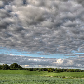 Clouds and fields by Kim  Schou - Landscapes Cloud Formations ( clouds, tree, hdr, green, vesterborg, fields )