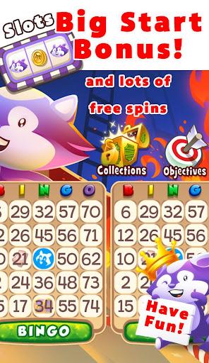 Bingo Raccoon - screenshot