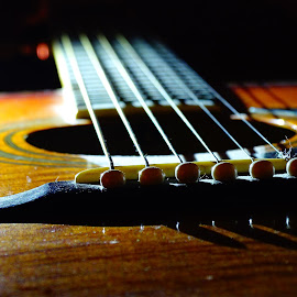 Guitar strings  by John Stewart - Artistic Objects Musical Instruments ( macro, guitar, light )