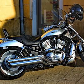 Harley-Davidson - Zagreb,Croatia by Jerko Čačić - Transportation Motorcycles (  )