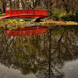 by Manuela Dedić - City,  Street & Park  City Parks