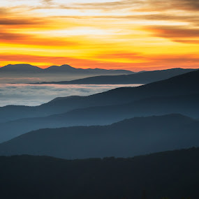 Roan Sunrise by Serge Skiba - Landscapes Mountains & Hills ( blue ridge mountains, mountains, color, valleys, layers, art, tennessee, canvas, fine, peaks, smoky mountains, north carolina )