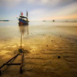 Stay by Dana Za - Landscapes Sunsets & Sunrises ( canon, beach, sunrise, landscape, photography )