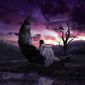 Stone Moon by Art Poetra - Digital Art People ( *people*digital*moon*stone*field )
