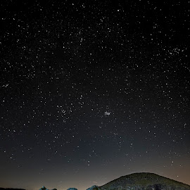 Midnight Under The Stars by Willie Forde - Landscapes Starscapes