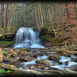 Pennsylvania Waterfall by Will Zook - Landscapes Waterscapes