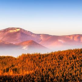 Beskydy by Martin Kratochvíl - Landscapes Mountains & Hills ( mountain, fog, czech, beskydy, spring )