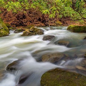 Along thestream by Jason Lemley - Landscapes Waterscapes ( water, stream, cascades, blur, rocks )