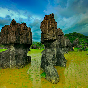 Musim Tanam telah tiba Ramang-Ramang, Maros South of Sulawesi by Rifa PhotoArt - Novices Only Landscapes