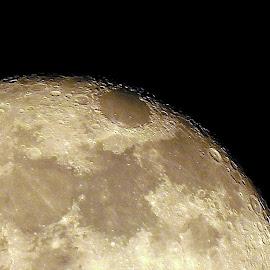 Crater-ridden Moon by Pradeep Kumar - Landscapes Starscapes