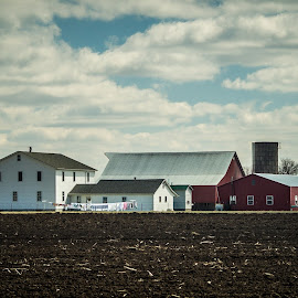 Amish farm by Janice Poole - Landscapes Prairies, Meadows & Fields