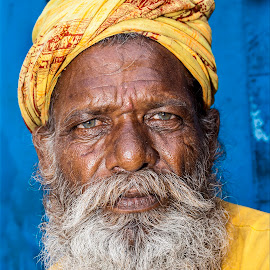 India by Diego Scaglione - People Portraits of Men ( looking, beard, india, yellow, man )
