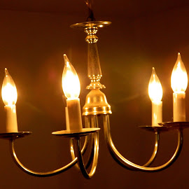 Lights by Anupam Srivastava - Novices Only Objects & Still Life ( lights, electrical, dark, electricity, brown )