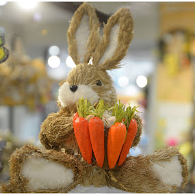 East Bunny by Lorraine D.  Heaney - Public Holidays Easter