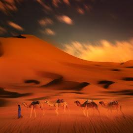 merzouga 00231 by Moussa Idrissi - Landscapes Deserts