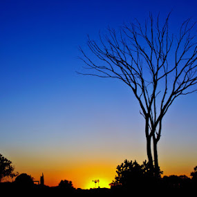 by Dave Ross - Landscapes Sunsets & Sunrises