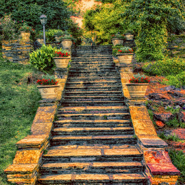 HDR Stairway by Dave Walters - Digital Art Places ( mystical, nature, colors, hd r, landscape, bellingrath )