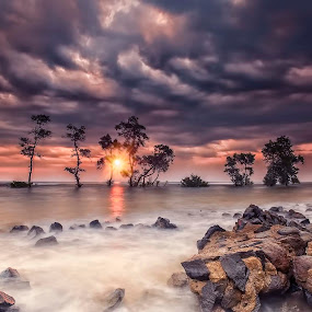 Pohon Galau by Mc Pujiyanta - Landscapes Sunsets & Sunrises ( sunrises, waterscape, seascapes, sunsets, landscapes, photography )