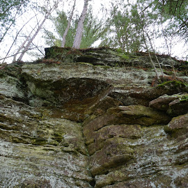 by Kathy Kehl - Nature Up Close Rock & Stone ( stone, forest, rock, stones, rocks )